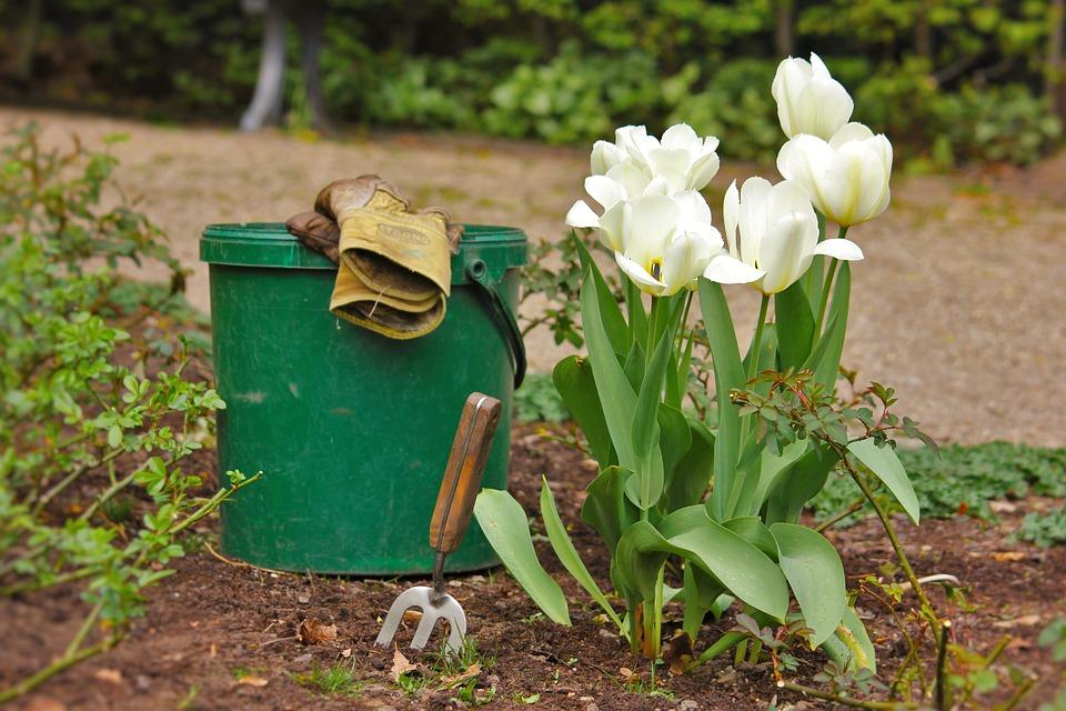 qualité de terre-jardinage