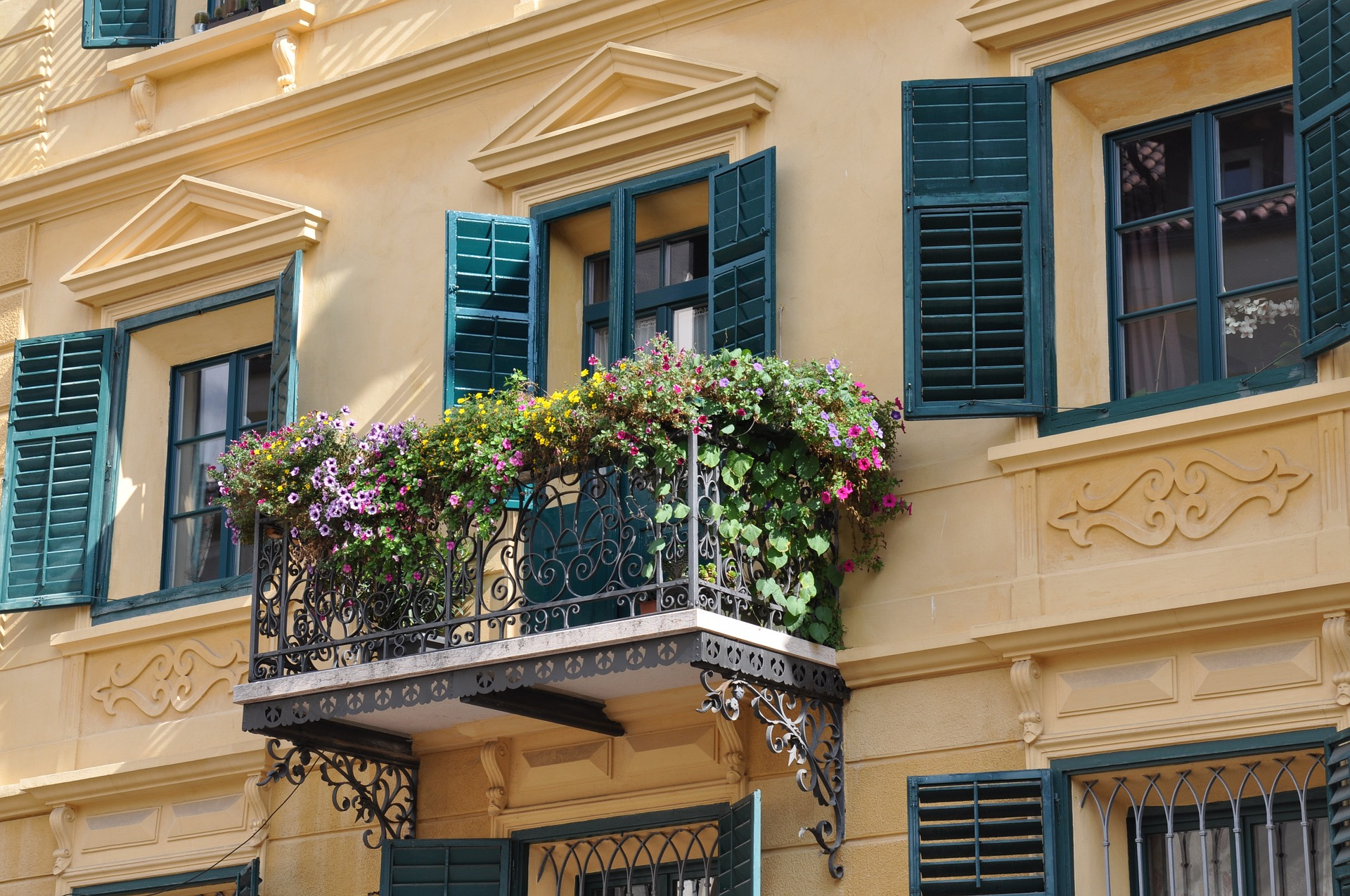 Plantes idéales pour fleurir un balcon